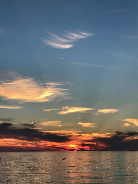IMG_8834 sunset 1